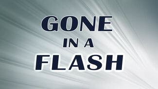 Gone in a Flash.jpg