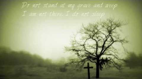 Do not stand at my grave and weep