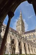 Salisbury Cathedral, ra, 2014-08-12