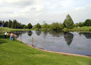 Kingsgate Park