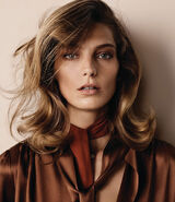Daria by Josh Olins for WSJ