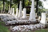 Cemetary in Mansfield