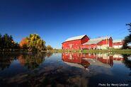 Nannick Farms
