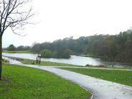 Central Forest Park