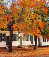 Autumn williamsburg
