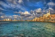 Tel-aviv-jaffa-shoreline-ron-shoshani