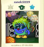 Sanek5229