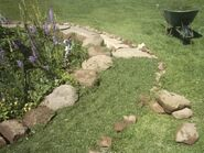 Path covered with clippings