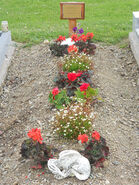 Pern McCaffrey former grave site