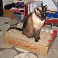Scratchbox1