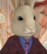 Dr-Bobtail-Character-Peter-Rabbit.jpg