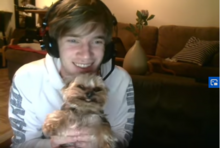 Ynk, the smiling yorkie.png