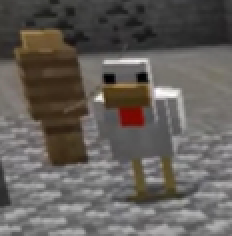 Chicken Sheep 2