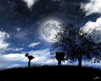 Starry Night1.jpg