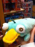 Perry whoopie