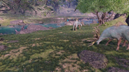 Ign pso2 ngs overworld animals grazing