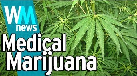10 Medical Marijuana Industry Facts - WMNews Ep