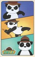 Peter the Panda card - back side