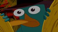 Perry encontrado.jpg