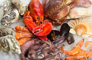 Shellfish-and-Crustaceans.jpg