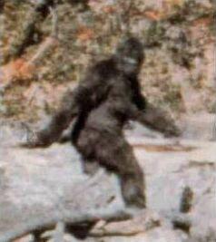 Bigfootphobia