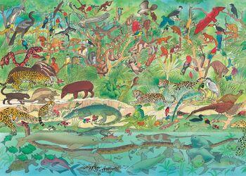 Rainforest Animals Illustration.jpg