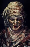 16144019-portrait-of-scary-bad-mummy-at-night