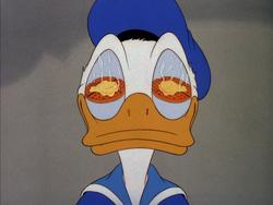 Donald dans Donald cuistot.png