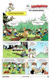La forêt noire en danger!.jpg