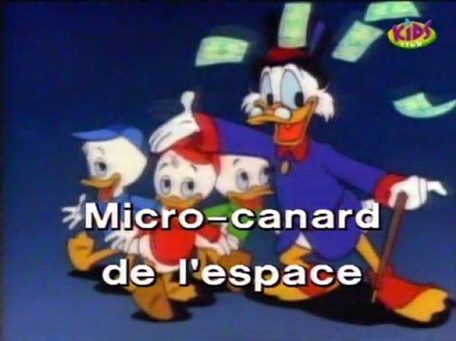Micro canard de l'espace