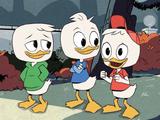 Riri, Fifi et Loulou Duck (La Bande à Picsou, série de 2017)