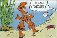Acrobators