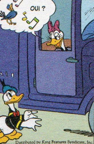 Powerduck/Donald et Daisy : théories sur un couple