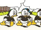 Riri, Fifi et Loulou Duck