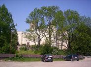 Castle hidden behind trees