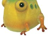 Yellow Wollywog