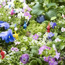Pikmin 3 Flowers.jpg