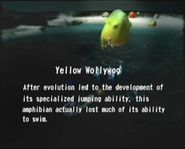 Reel27 Yellow Wollywog