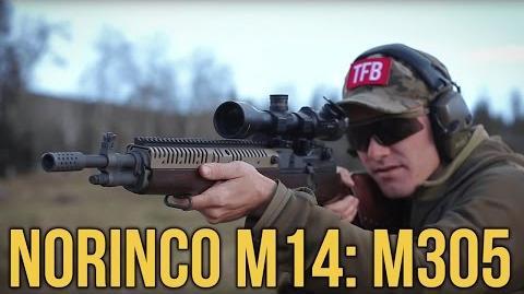 Norinco's M14- M305 or Dominion Arms SOCOM 18