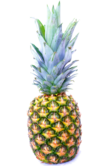 Pineapple-13718940674QS.png
