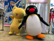 PinguandCerberus
