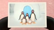 Pingu'sIglooPITC