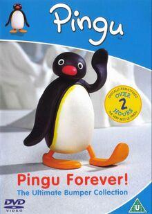 Pinqu-Pingu-Forever-DVD-NL.jpg
