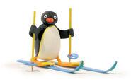 PINGU Ski 01