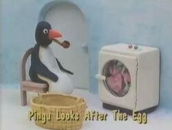 PinguLooksAftertheEggTitleCard.jpg