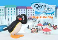 PinguintheCity