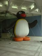 PinguBallon20th
