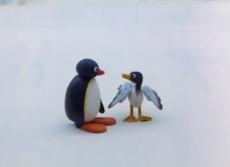 Pingu and the Seagull