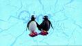 PinguandPingiinPingutheSnowboarderMenuTransition