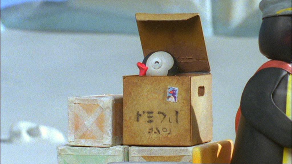 Pinga in a Box